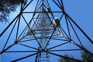 Vodafone, Etisalat Misr, and WE